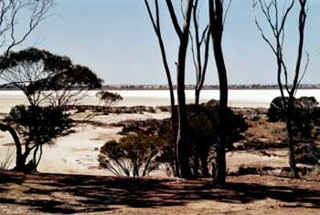 Australien: Salzpfannen im Murray Becken