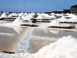 Salinen von Fuencaliente -  Sal Océano